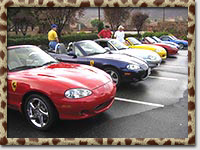 Miatas parked during Surf'N'Safari '04 (Photo by Mark Booth)